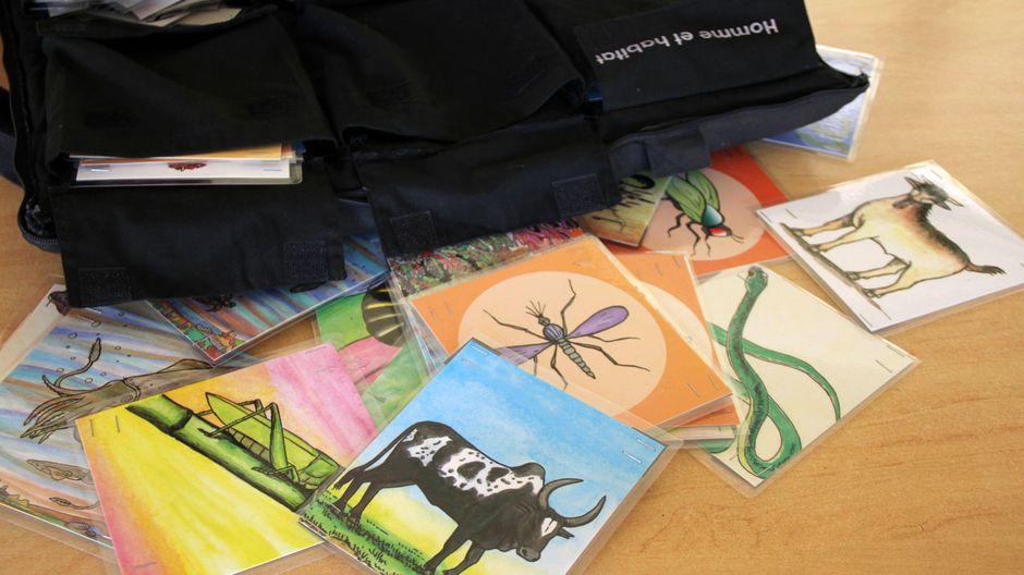 Kit MAD'ERE heißt das Umwelt-Set, das im Unterricht eingesetzt wird. Anhand von zahlreichen thematischen Karten lernen die Kinder Klima, Flora und Fauna Madagaskars und viele weitere Themen kennen.