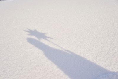 Der Schatten eines Sternsingers im Schnee. Der Schatten ist scharf und so sieht man, dass der Sternsinger einen Umhang und eine Krone an hat. Gleichzeitig trägt er noch den Stern der Sternsinger an einem Stock mit sich.