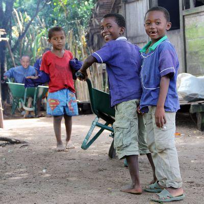 Zwei Jungen schieben spielerisch eine Schubkarre und sind fröhlich.