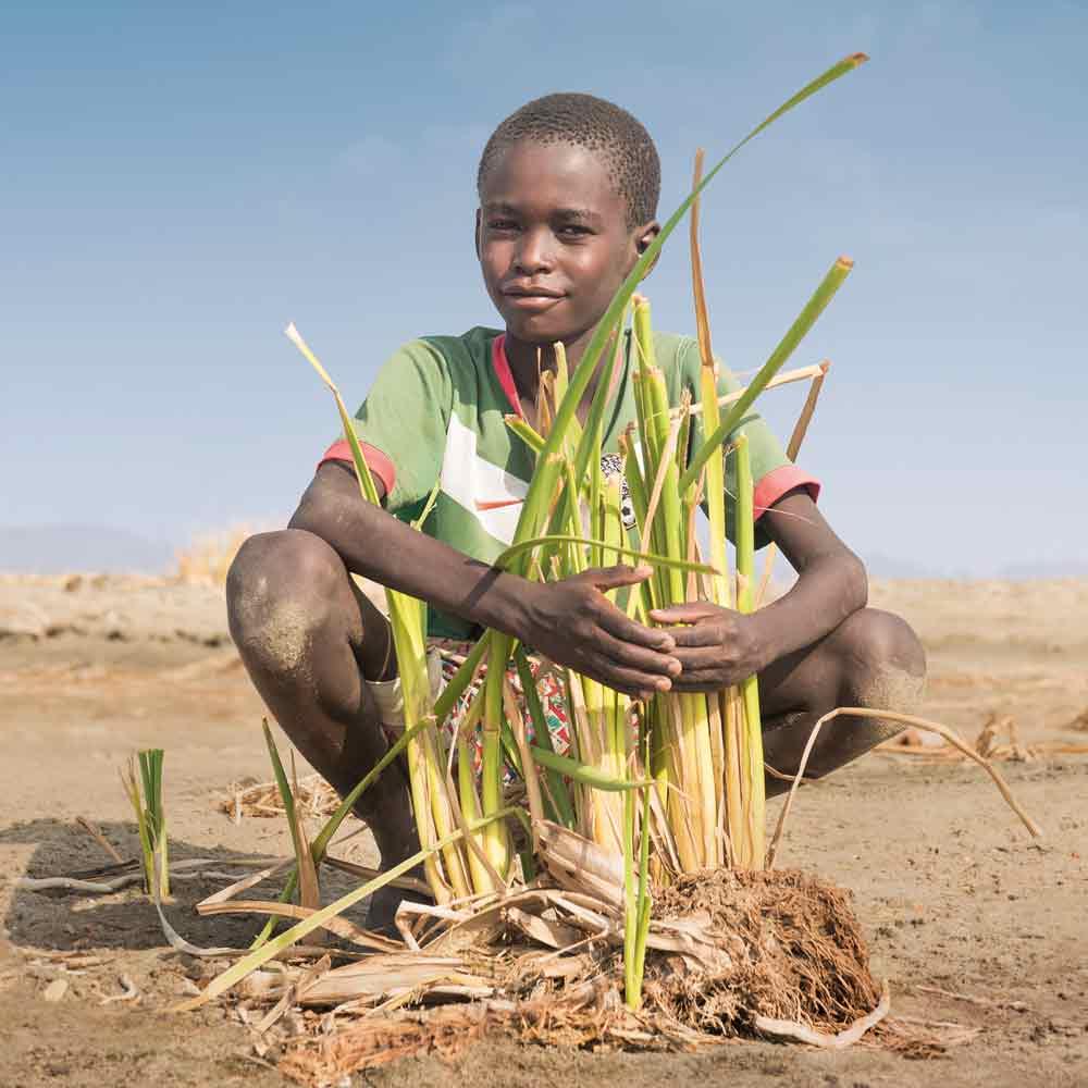 Bilderserie Kenia – alle Fotos